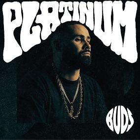 Frontcover PLATINUM EP.jpg