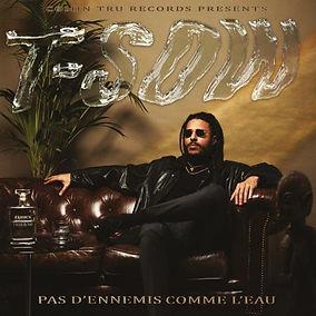 T-SOw LP 2020.jpg