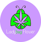 ladybug flower hemp logo transparent.png