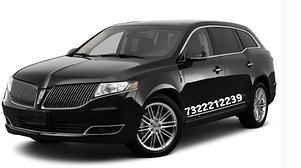 airport taxi service,desi taxi service,desi limo service,desi cab service,indian taxi serv