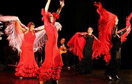 Soirée Flamenco en Ardèche Chez Mickey L