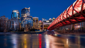 Calgary Online Reputation Management Services
