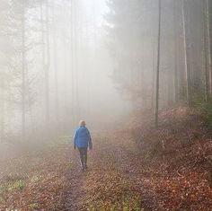 Marcher en Forêt …