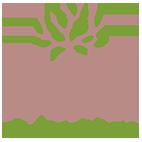 logo-desracinesetdesreves_FAVICON.png