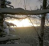 Neige_en_forêt.jpg