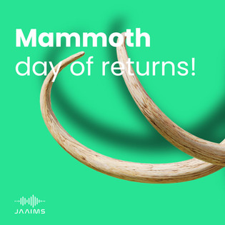 Mammoth day of returns: January 7 2021