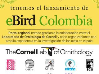 Colombia número uno en aves ya tiene su portal eBird.