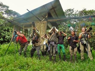 Durante 10 días se escucharon disparos de cámaras fotografiando las aves del Piedemonte Andino Coste