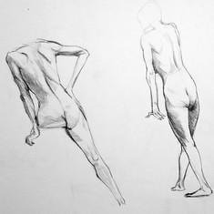 anatomie Cédric BOURDE 5.jpg