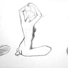anatomie Cédric BOURDE 2.jpg