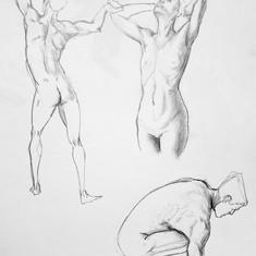 anatomie Cédric BOURDE 3.jpg