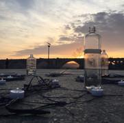 Intertidal Vessels