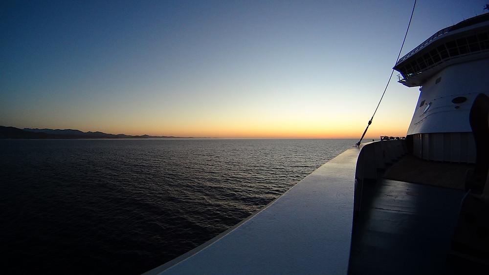 Cruise Ship Musician