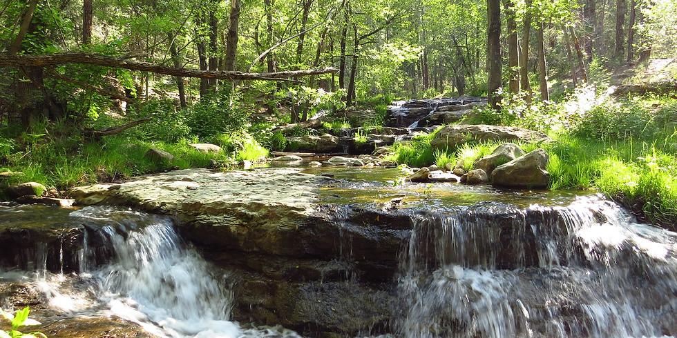 Horton Springs