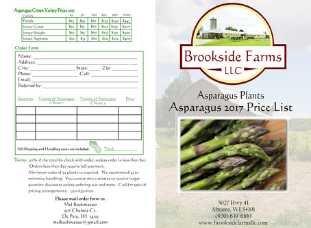 Brookside Farms LLC Asparagus Bi-fold Brochure Design
