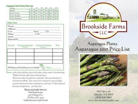 Brookside Farms LLC Asparagus Bi-fold Brochure Design