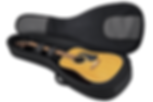 acoustic bag