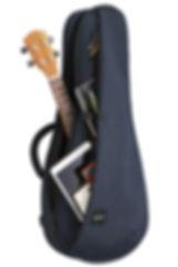 Ukulele, ukulele bag