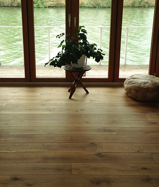 Thames Oak 2.JPG