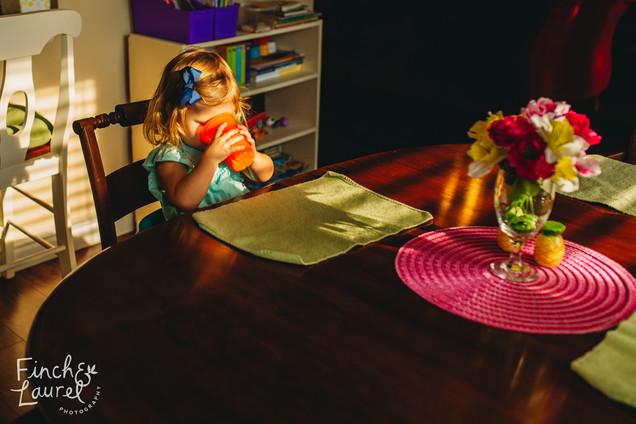 Harper Documentary Family Photography