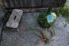 reportage pour la Ferme La Goulette, Sainte Colombe en Bruilhois - vinaigrerie