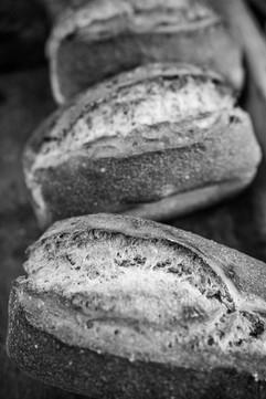 photo culinaire, Soleil Levain, boulangerie à Montpezat d'Agenais pour la revue Le Citron