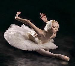 Dying-Swan 1_edited.jpg