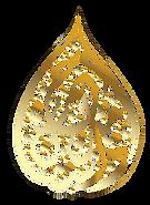 Transparent Hamzanama Logo no border 2.p
