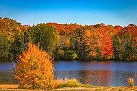 fall-stafford-township.jpg