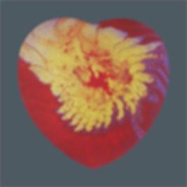 PMA-HOL-20200111-001 - Passion's Outbrea