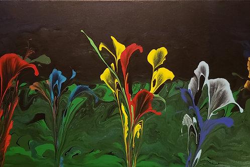 Harlequin Iris Sodality