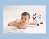 赤ちゃんヌード、百日記念、6ヶ月
