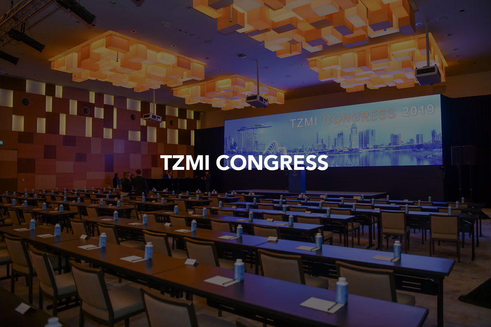 TZMI Cover.jpg