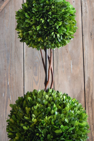 Triple Ball Preserved Boxwood Topiary 40""