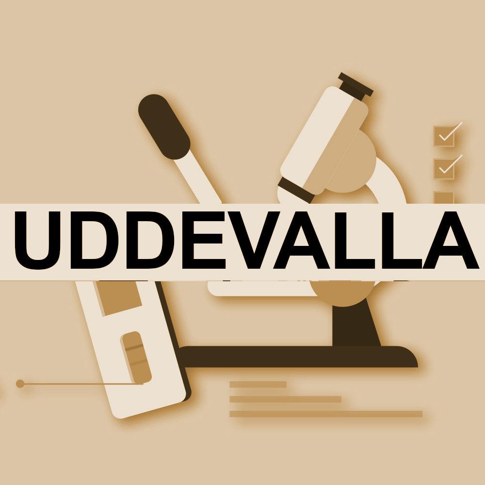 UDDEVALLA - PCR TEST MED RESEINTYG