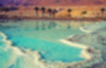 Les plages de la mer Morte.jpg