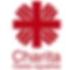 Czech Caritas.png