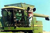 Mickey combine.jpg