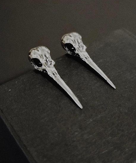 Corvus Studs
