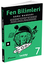 7-SB-Fen.png