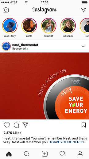 Nest2 copy copy.jpg