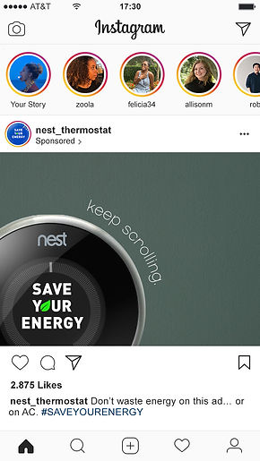 Nest1 copy copy.jpg