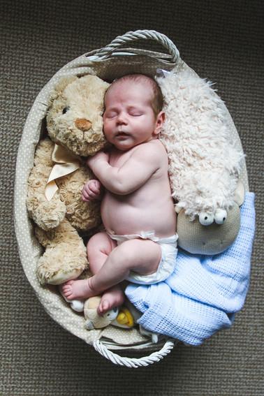 Carla Whittingham Photography Babies-4.j