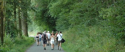 Longlier walk.jpg