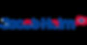Jacob Holm Logo.png