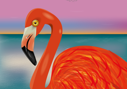 Flamingo Loca