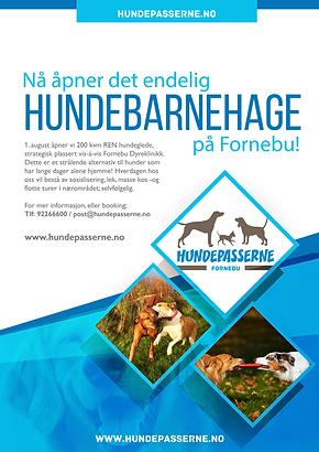 Hundepasserne Poster