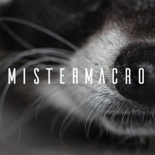 Mistermacro