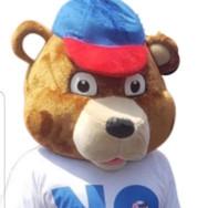 NO BULLYING BEAR