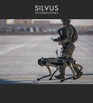 SILVUS.jpg